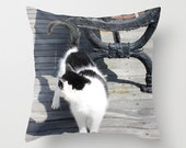Cat Photo Pillow Cover, Feral Cat Pillow Cover, Black & White Cat, Cat Photo Cover, Cat Home Decor, Jersey Shore, Cat on Boardwalk