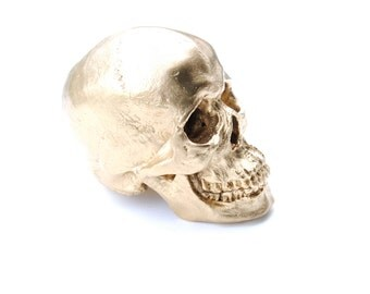Large - Life Size  Human Anatomy - Faux Gold Human Skull - Resin Home Decor - Table Top Skeleton Head    SK08