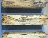 Magnolia Turning Blanks, Spalted, Pepper Mill Blank