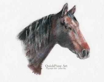 Bay Mare Horse Portrait