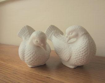 Love birds.  Pair of bisque white doves.