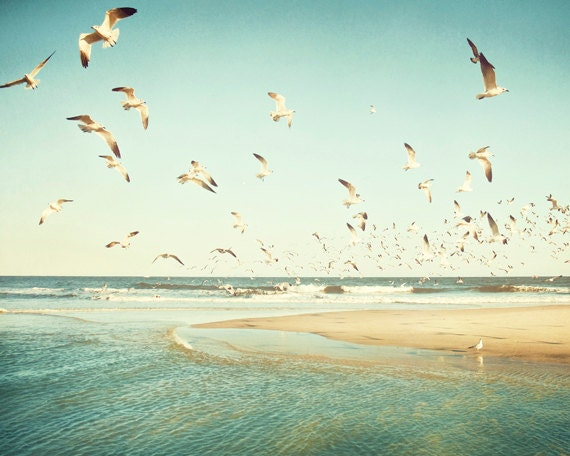 "Birds Flying Photography - seagulls ocean mint green beach print sea teal blue turquoise beige yellow beige shore, 11x14, 8x10, ""Freedom"""