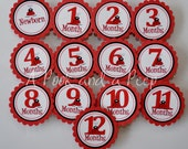 Red and Black Ladybug 1st Year Photo Tag Banner Display First Birthday Party Decoration