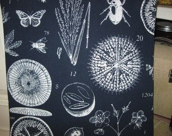 "14"" x 14"" Home Decor Cotton Pillow Cover - Terrific Bold Navy and White Garden Naturalist's Journal Print Celebrates Gardens"