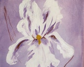 Small painting White iris on purple