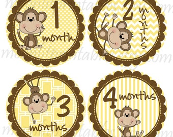 Monkey Baby Stickers, Milestone Stickers, Month to Month Stickers, Monkey Photo Prop, Baby Shower Monkey, Monkey Nursery Decor (180)