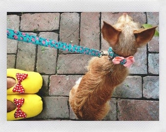 Vintage Style Floral Aqua Peach  Dog Leash Set size Extra Small