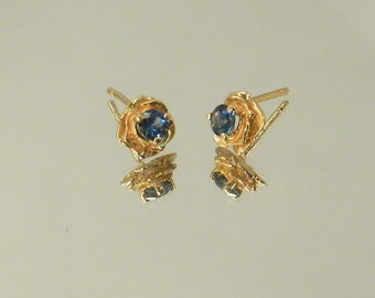Montana Sapphire Earrings  #014-36