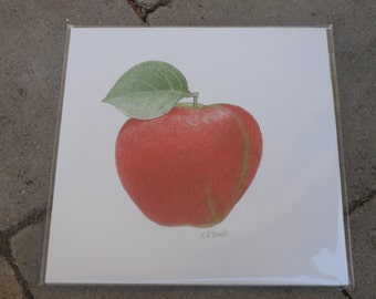 Print of Hand Drawn Red Delicious Apple
