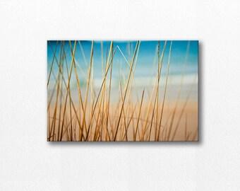 abstract beach canvas wrap beach photography canvas 12x12 24x36 fine art photography ocean large scale beach grass teal gold nautical decor