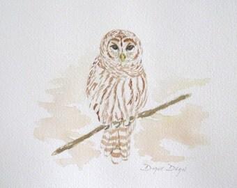 WATERCOLOR PAINTING of OWL---original painting