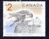 Peregrine Falcon Postage Stamp from Canada Post
