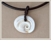 Gift for man Natural Shell pendant brown leather Shiva eye shell operculum shell minimalist necklace pendant gift idea for him one of a kind