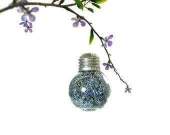 Mini Lightbulb Ornament with Blue Preserved Reindeer Moss, Lightbulb Decoration Blue Terrarium Ornament, Mini Blue Ornament, Blue Home Decor