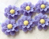 18 mm Purple Color Resin Marigold Flower (.su)