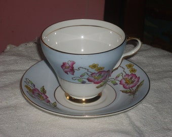 Taylor and Kent Tea Cup and Saucer