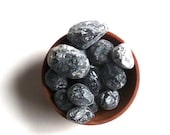 SALE--- 7 APACHE TEARS --- crystal grid supplies