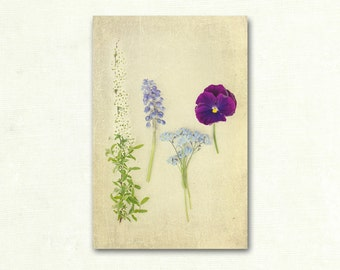 Flower Photograph, Shabby Chic Wall Art, Cottage Chic Decor, Floral Livingroom Art, Purple and Gray Photograph