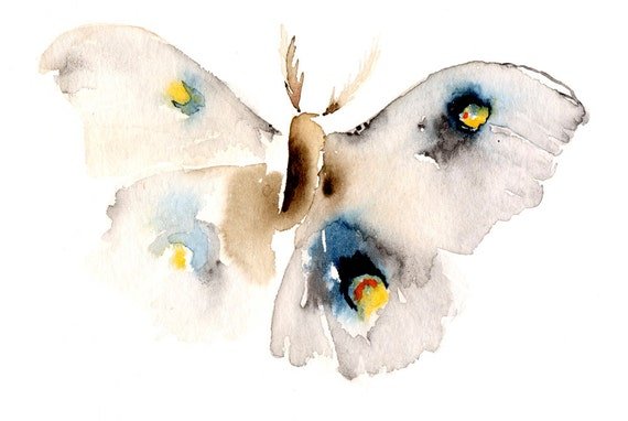 Moth Fine Art Print from Original Watercolor Painting