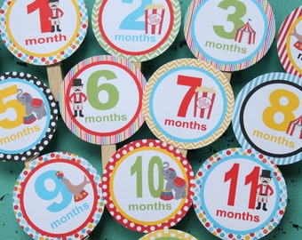 BIG TOP CIRCUS  1st Birthday Photo Clips Banner Newborn - 1 year - Party Packs Available