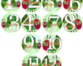 Baby monthly stickers 1 to 12 months - HUNGRY CATERPILLAR - month to month baby stickers - Bodysuit Romper Stickers - Monthly Baby Stickers