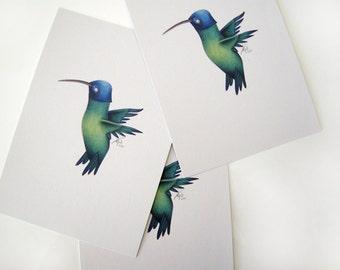 Humming Bird Print A5 Indigo Capped