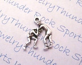 Wrestling Wrestlers Sports Charm Pendant Antique Silver