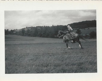 Lawrence of Kansas - Vintage 1950s Arabian Horse and Costumed Rider Photograph