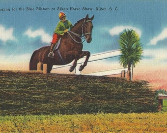 The Aiken Blue - Vintage 1930s Show Jumping Tinted Linen View Postcard