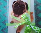 Adorable Pug Card Set- Includes 10 cards & envelopes