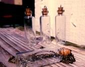 Dandelion Necklace- Specimen Necklace- Wish Necklace