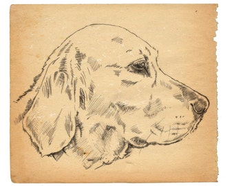 Custom pencil drawing from your image – vintage style