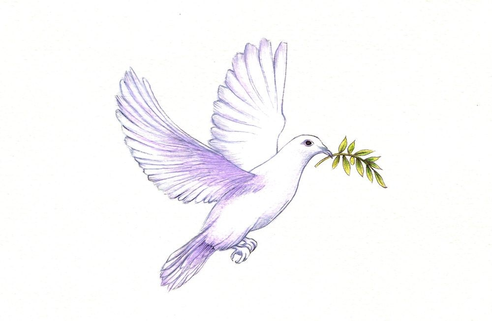 Peace Dove Print digital print of a drawing available