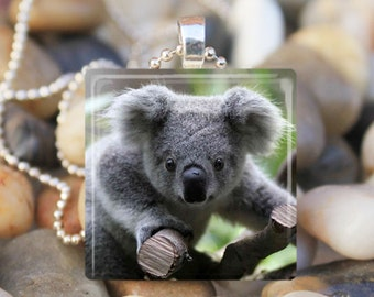 BABY KOALA BEAR Cute Baby Animal Bear Glass Tile Pendant Necklace Keyring
