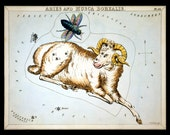 Aries and Musca Borealis March April Constellation ZODIAC Star Chart ASTRONOMY Astrology Digitally Remastered Fine Art Print / Poster
