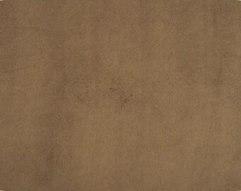 CAPPUCCINO plush minky fabric - 1 yd cut.  Shannon fabrics plush cuddle fabric