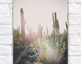 Desert Light, Southwestern Desert, Saguaro Cactus Photography - Sun Glare, Golden Hour, Arizona, Travel Photography, Cactus, Southwestern