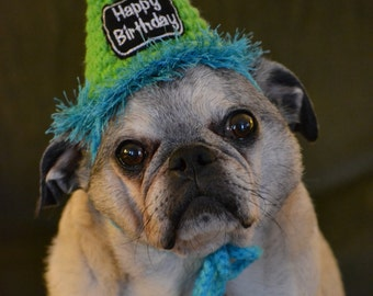 Crocheted  Dog or Cat Birthday Party Hats, Pet Birthday Hats