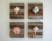Beach Decor on Driftwood for coastal decor. Set of 4 as shown