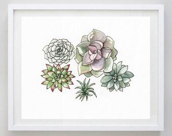 Succulents  2 Watercolor Print - Succulent Art - Succulent Wall Decor