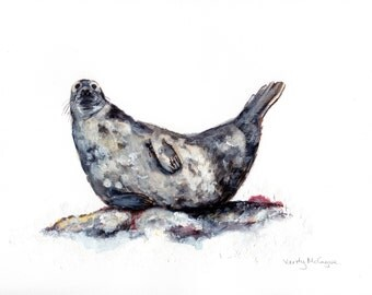 A4 Atlantic Grey Seal Illustration PRINT