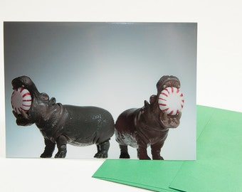 Funny Christmas Card: Hippos and Peppermints