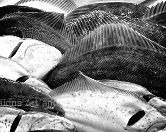 Surreal Black and White Photography, Fish Print, Large Abstract Wall Art, Contemporary Home Decor, Still Life Photo