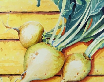 White Turnips an Interpretive Realism Watercolor Vegetable Still Life