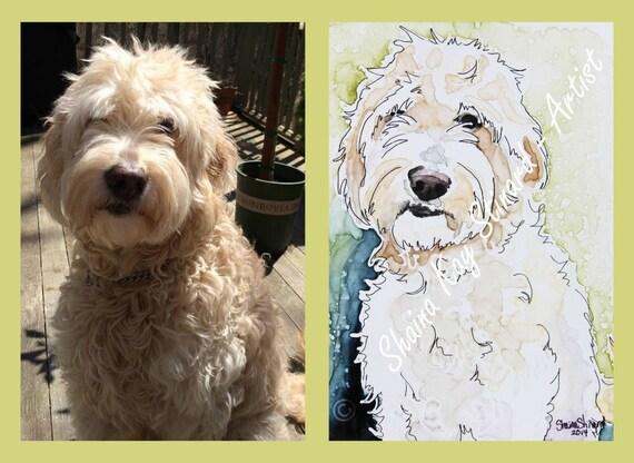 custom pet portraits    watercolor sketch on yupo   5 x 7