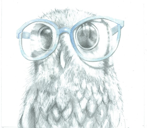 funny owl drawing - photo #28
