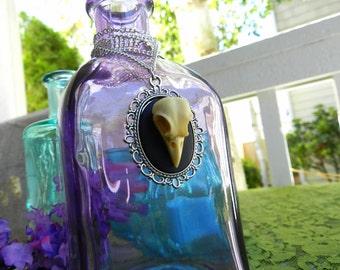 Raven Skull Cameo Necklace Victorian Goth Macabre