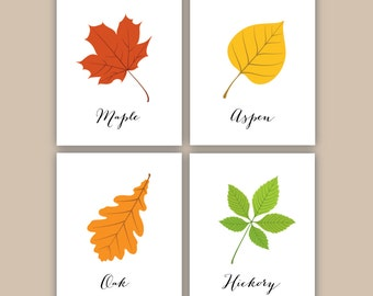 PRINTABLE Types of Leaves  // 8x10 JPEG files // 4 Piece Set // Kids Playroom Fall Wall Art // Maple Aspen Oak Hickory // Instant Download