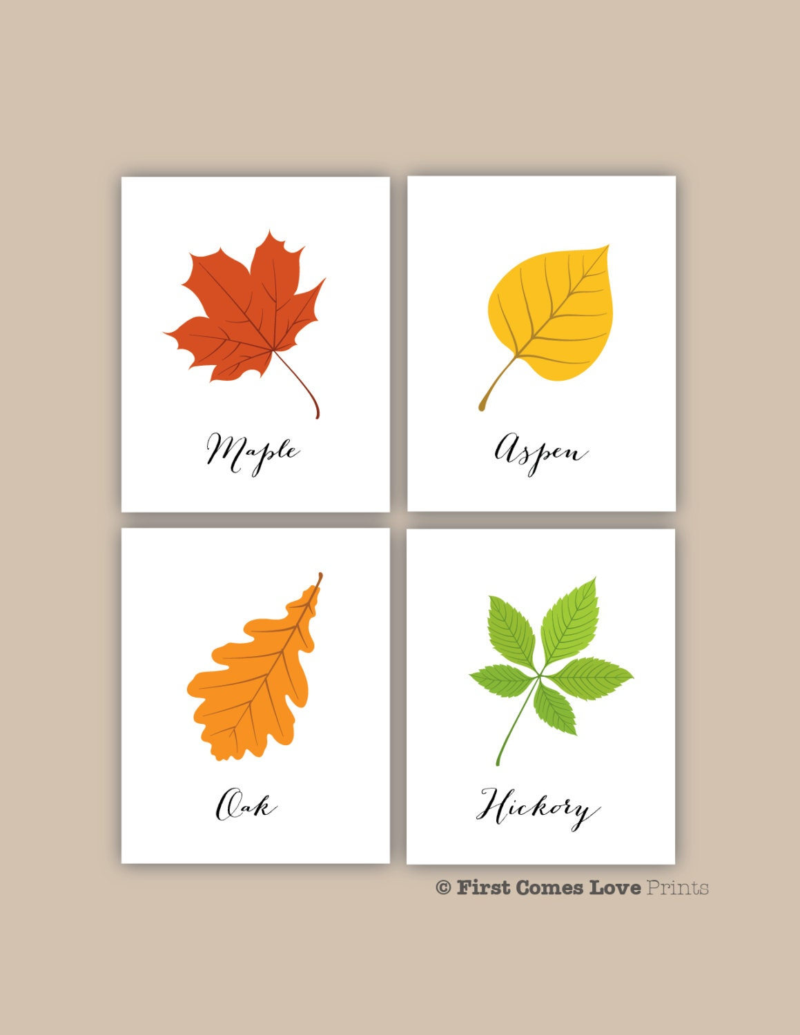 printable types of leaves 8x10 jpeg files 4 piece set