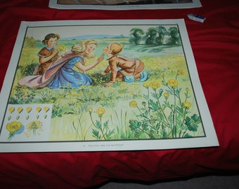 "Vintage School Poster ""Tick Tock and the Buttercup"" Eileen Soper 1940's/50's"